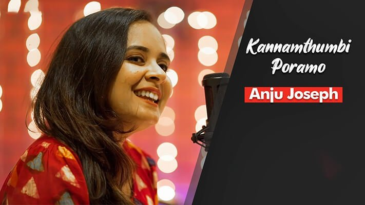 Kannam Thumbi Poramo Lyrics Translation